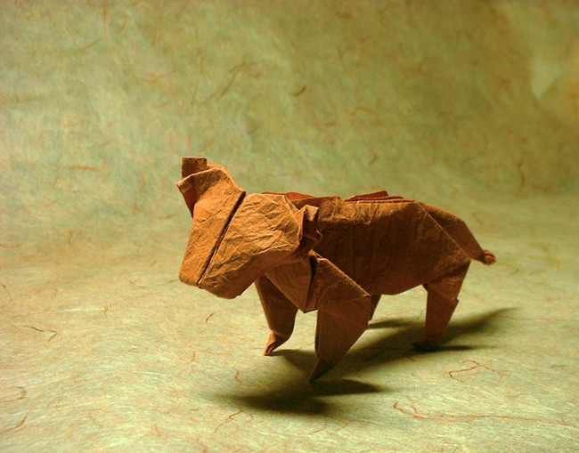 Origami Tiger by John Montroll folded by Gilad Aharoni