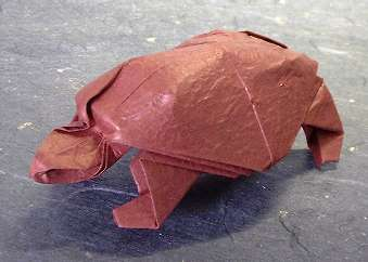 Origami Tortoise by Robert J. Lang folded by Gilad Aharoni on giladorigami.com