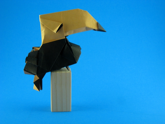 Origami Toucan by Hoang Tien Quyet folded by Gilad Aharoni