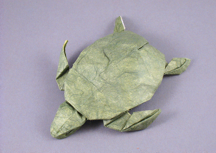 Origami Turtle by Gerard Ty Sovann folded by Gilad Aharoni