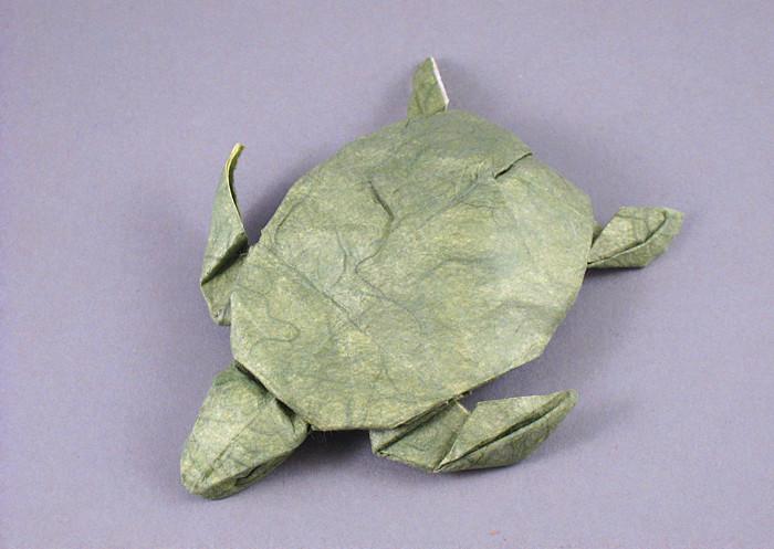 966: Green Turtle – Setting the Crease | 497x700