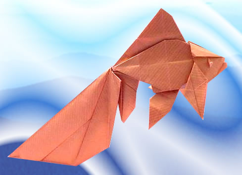 Origami Goldfish - Veiltail by Ronald Koh folded by Gilad Aharoni