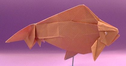 Origami Goldfish - Wakin by Ronald Koh Folded from a square of gold wrapping-paper by Gilad Aharoni on giladorigami.com