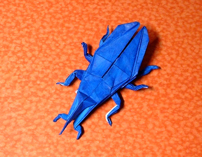 Origami Weevil by John Montroll Folded from a square of origami paper by Gilad Aharoni on giladorigami.com
