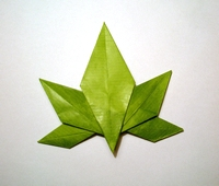 Origami Japanese maple leaf by Satoshi Kamiya on giladorigami.com