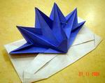Origami Peacock pop up card by Jeremy Shafer on giladorigami.com
