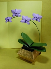Origami Orchid by Viviane Berty on giladorigami.com
