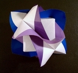 Origami Fluted module by Rocky Jardes on giladorigami.com