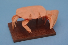 Origami Fiddler crab by Marc Kirschenbaum on giladorigami.com