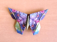 Origami Butterfly - Sok Song by Michael G. LaFosse on giladorigami.com