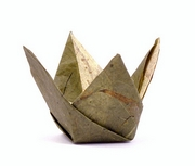 Origami Tulip bowl by Peter Borcherds on giladorigami.com