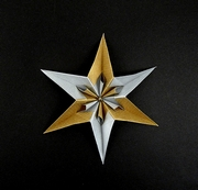 Origami Flowered star by Ekaterina Lukasheva on giladorigami.com