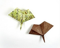 Origami Gingko leaf by Jun Maekawa on giladorigami.com