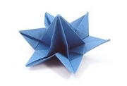 Origami Desert flower by Nick Robinson on giladorigami.com