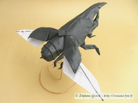 Origami Hercules beetle (flying) by Satoshi Kamiya on giladorigami.com