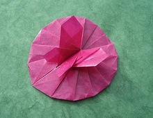 Origami Butterfly in lily pad by Tomoko Fuse on giladorigami.com