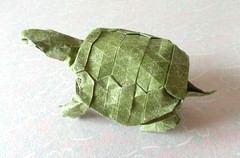 Origami Western pond turtle by Robert J. Lang on giladorigami.com