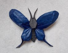 Origami Butterfly by Nguyen Hung Cuong on giladorigami.com