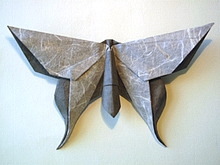 Origami Butterfly - Guy Kawasaki by Michael G. LaFosse on giladorigami.com
