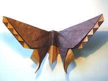 Origami Butterfly - Robert Lang by Michael G. LaFosse on giladorigami.com