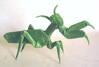 Origami Praying Mantis by Robert J. Lang on giladorigami.com