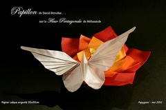 Origami Butterfly by David Derudas on giladorigami.com