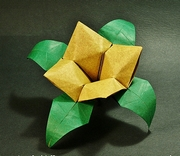 Origami Square flower by Roman Diaz on giladorigami.com