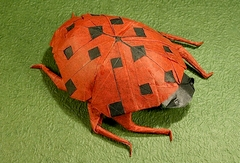 Origami Ladybug - spotted by Robert J. Lang on giladorigami.com