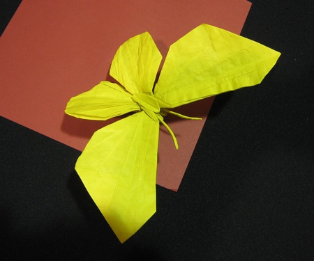 Origami Butterfly by Jason Ku on giladorigami.com