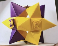 Origami Star-shaped polyhedron or with flowers by Toshikazu Kawasaki on giladorigami.com