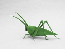 Origami Katydid HP by Robert J. Lang on giladorigami.com