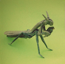 Origami Praying mantis by Paulius Mielinis on giladorigami.com