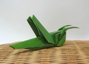 Origami Grasshopper by Seo Won Seon (Redpaper) on giladorigami.com