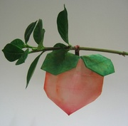 Origami Peach by Seo Won Seon (Redpaper) on giladorigami.com