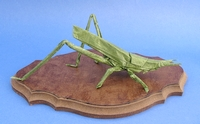 Origami Locust - longheaded by Satoshi Kamiya on giladorigami.com