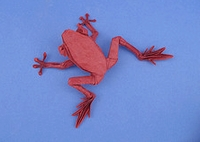 Origami Poison dart frog HP by Robert J. Lang on giladorigami.com