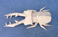 Origami Lucanus stag beetle by Hojyo Takashi on giladorigami.com