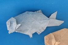 Origami Bream by Ryan Welsh on giladorigami.com