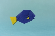 Origami Blue tang by David Llanque on giladorigami.com