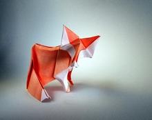 89 Square Origami Fox By Fabian Correa On Giladorigami