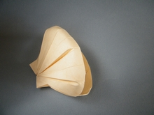 Origami Scalloped shell by Hoang Tien Quyet on giladorigami.com