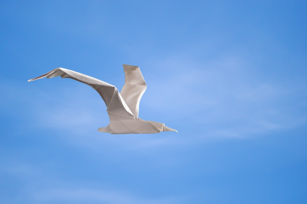 Origami Seagull by Angel Morollon Guallar on giladorigami.com