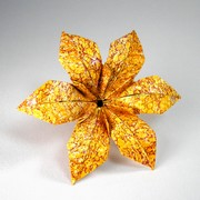 Origami master class flowers book review gilads origami page origami lily with six petals by david shall on giladorigami mightylinksfo Gallery