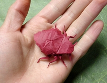 Origami Bed bug by Sebastian Arellano on giladorigami.com