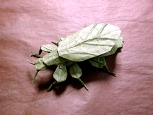 Origami Leaf insect by Daniel Robinson on giladorigami.com