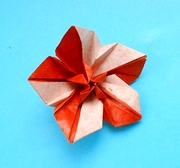 Origami Candy flower by Matsui Erika on giladorigami.com