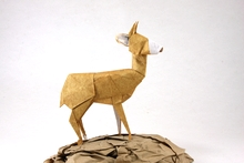 Origami Bambi by Quentin Trollip on giladorigami.com