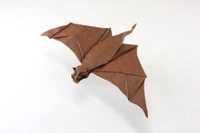 Origami Free-tailed bat by Quentin Trollip on giladorigami.com