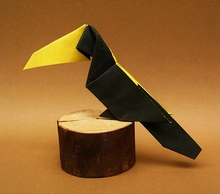 Origami Toucan by Stephen O