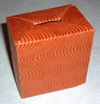Origami Money box by David Brill on giladorigami.com